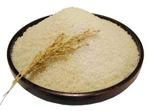 おいしいお米食味ランキング27年連続特A地区、南魚沼市塩沢